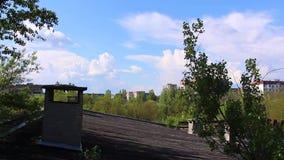 Pripyat vatten för pölsimningparaplyer copter flyg- sikt arkivfilmer