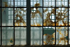 Prisão: as janelas de aço de vidro quebradas fecham-se imagem de stock