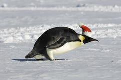 Prisa para la Navidad Fotografía de archivo libre de regalías