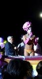 Priscilla in Vrolijk Pride Parade, Napels, 29 Juni 2013. Stock Afbeeldingen