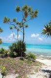 Prise d'air à distance à l'île de mystère Photographie stock libre de droits