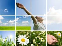 Prise de l'énergie images libres de droits