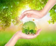 Prise de main de femme écologique Image stock