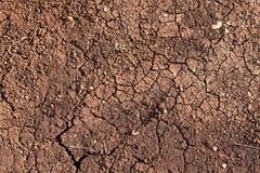 Prise de masse sèche Photographie stock libre de droits
