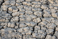Prise de masse sèche - Esfahan. Images stock