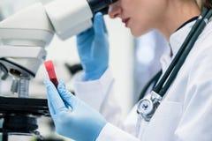 Prise de sang de examen de femme sous le microscope dans le laboratoire Photos libres de droits