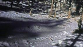1973 : Prise des tours tirant un traîneau de bois de chauffage à travers la neige d'hiver banque de vidéos