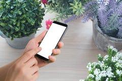 Prise humaine de main et téléphone portable d'écran vide de contact sur le bea de variété images libres de droits