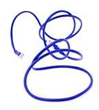 Prises bleues du câble RJ45 d'ordinateur D'isolement sur le blanc Images libres de droits