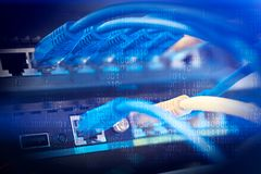 Prises de commutateur de réseau avec des jonctions de câble photo libre de droits