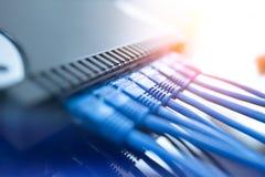 Prises de commutateur de réseau avec des jonctions de câble image stock