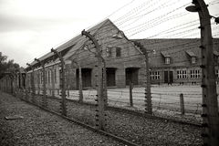 Prisioneiro Fotos de Stock Royalty Free