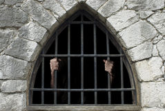 Prisioneiro Imagens de Stock Royalty Free