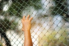 Prisioneiro do homem que foi encarcerado na prisão fotos de stock