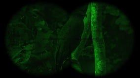 Prismáticos a través vistos cheela con cresta de los spilornis del pájaro del águila de la serpiente con la visión nocturna Obser