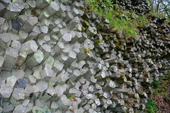Prism wall - basalt columns in  Bavaria, Germany. Prism wall - basalt columns in the Rhön, Bavaria, Germany in detail royalty free stock images