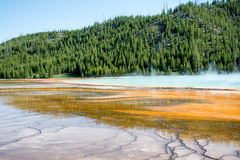 Prismatic Textures. The Prismatic Springs at Yellowstone National Park. The pool was very beautiful and I took pictures from many angles Royalty Free Stock Photos