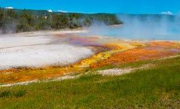 Prismatisches Frühlings-Yellowstone Nationalpark Stockfotografie