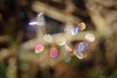 Prismatiska vågor av ljus Royaltyfri Fotografi