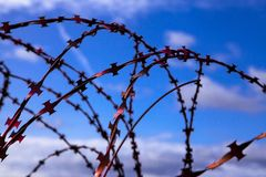 Prison. Barbed wire. Barbed wire on blue sky background with white clouds. Wire boom. Military conflict . Syria. Barbed wire. Barbed wire on blue sky background Stock Photo