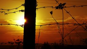 Prison barbed wire fence at sunset. 4k stock video