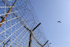 Prison fence Stock Image