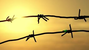Prison fence of barbed wire at sunset close-up. Border zone, security territory, fence of the military unit. 4k stock footage