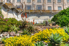 Prison Gardens at Alcatraz Island Prison Stock Image
