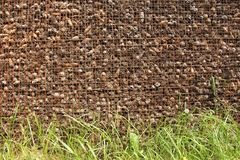 Prison and Imprisonment of Cones Behind Bars. Background of Pine. Background of Pine Cones and Grains of Grass. Cones on the Grate. Prison and Imprisonment of Royalty Free Stock Photo