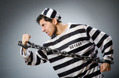 Prison inmate in funny concept Stock Photos