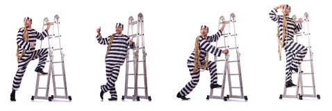 The prison inmate isolated on the white Royalty Free Stock Photos