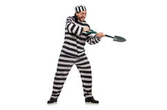 Prison inmate with spade Stock Image