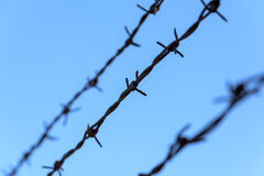 Prison Rusty Barbed Wire. On Blue Sky Stock Image