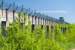 Prison wall and sharp wire barbs coiled Stock Photos