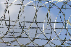 Prison Wire. Swirls of barbed prison wire against a blue sky Royalty Free Stock Image
