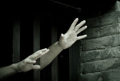 Prisoner. Hands stretch out from prison bars royalty free stock photography