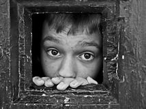 Prisoner face looks out the jail window Royalty Free Stock Image