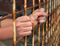 Prisoner hands. View at a young (prisoner) hands grabbing prison bars. Vertical color photo Stock Image