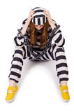 Prisoner in striped uniform Royalty Free Stock Photography
