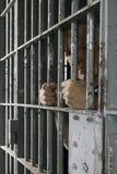 Prisonnier en cellule Photographie stock libre de droits