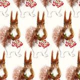 Prisquirrel blommor, rönn och sörjer kotten vektor illustrationer