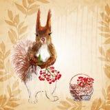 Prisquirrel, fiori, sorba e pigna illustrazione di stock