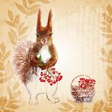 Prisquirrel, flowers, rowan and pine cone Royalty Free Stock Photography