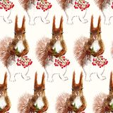 Prisquirrel, flowers, rowan and pine cone. Vector illustration Prisquirrel, flowers, rowan and pine cone Stock Images