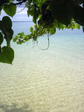 Pristine Beach of Tonga Royalty Free Stock Photography