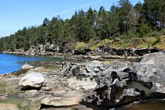 Coast of East side of Vancouver Island showing erosion and large evergreen trees on a sunny spring day. Pristine coastline of Vancouver Island at the mouth of royalty free stock photos