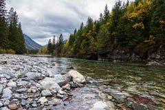 Pristine glacial river flow Royalty Free Stock Photo