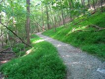 Pristine Hiking Trail. A well groomed hiking trail at Pilot Mountain State Park in North Carolina stock image