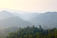 Pristine jungle view with fading mountains in background Royalty Free Stock Photo