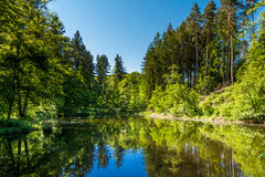 Pristine Lake Scene Stock Photography